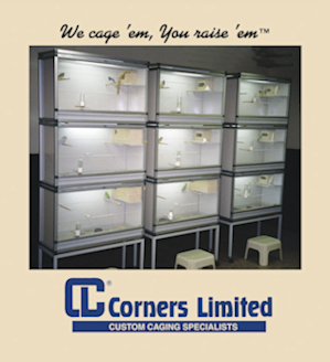 Corners Limited